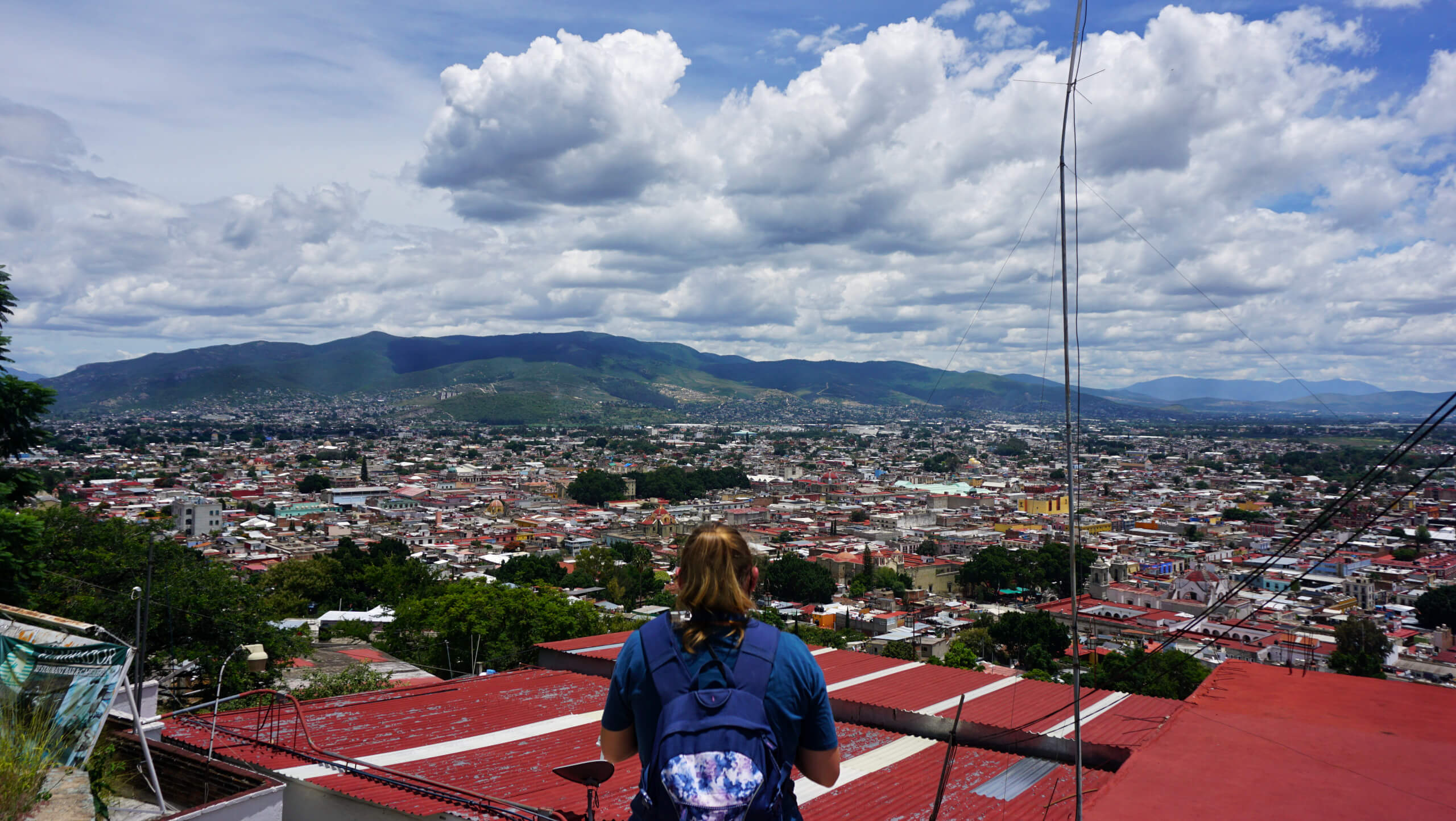 (Weeks 11 to 14) State of Oaxaca